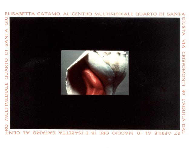 Opera di Elisabetta Catamo