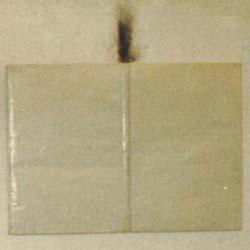 Precombustione, 1992