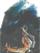 MarioSchifano_Le avventure di Pinocchio_serigrafia 59su250_1992_hi
